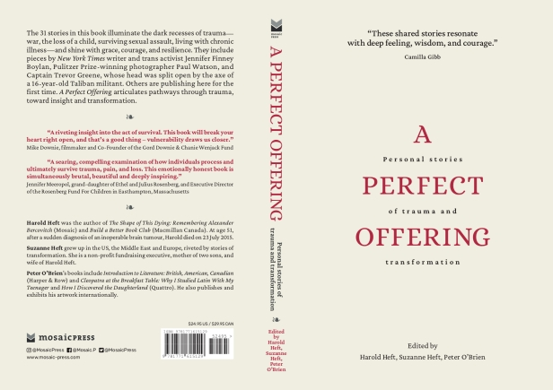 A Perfect Offering Cover